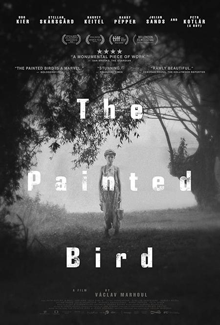 L'Oiseau bariolé